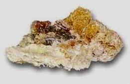 Каменное масло от гепатита с